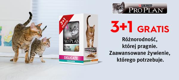 pro_plan_mokre_karmy_kot_3+1
