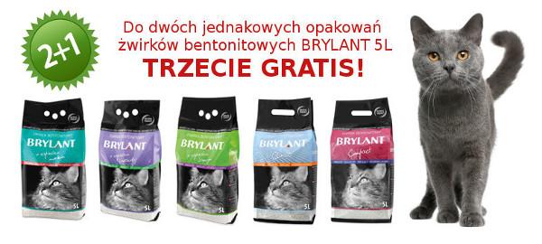 Brylant bentonitowy 2plus1 gratis