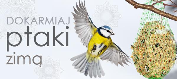 baner_kategoria_dokarmianie_ptaków_2015
