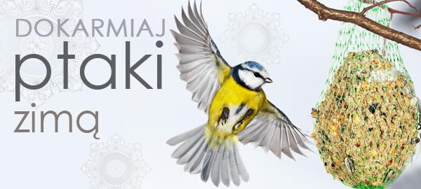 baner_top_dokarmianie_ptaków_2015