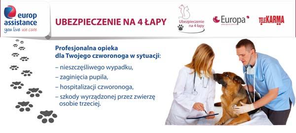 Pet Assistance Banner
