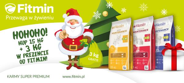 fitmin_program_baner_swiateczny