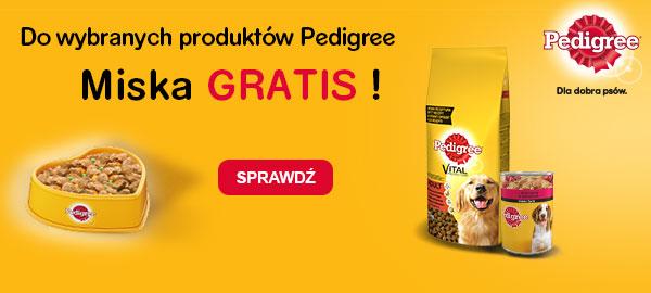 pedigree+miska