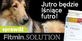 e fitmin_solution_sidebox_witaminy