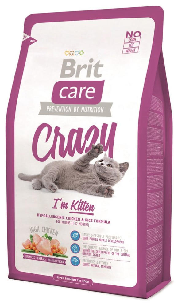 BRIT CARE CAT CRAZY IM KITTEN