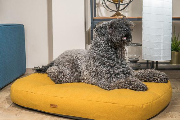 amiplay montana materac dla dużego psa