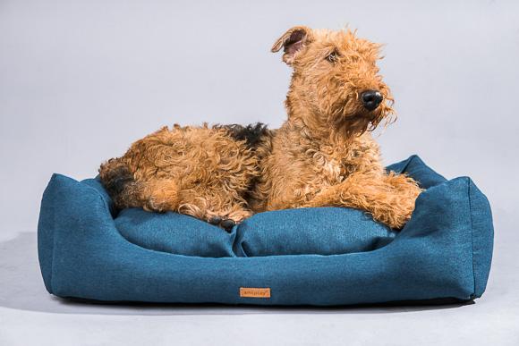 5907563274365 amiplay montana sofa dla psa