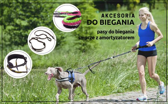 Dingo akcesoria do biegania z psem