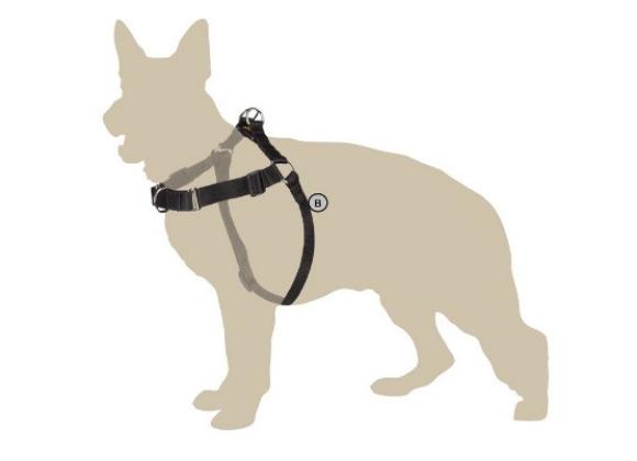 Dingo szelki treningowe dla psa