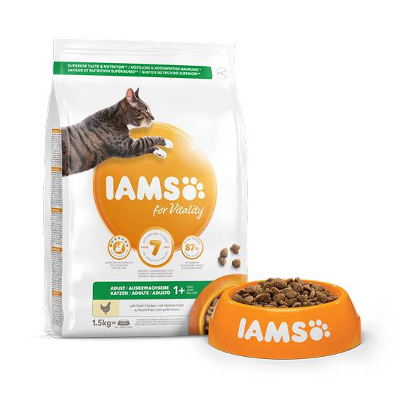 karma iams dla dorosłych kotów