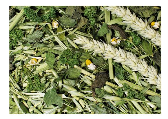 4024344071003 zioła dla gryzoni i królików, jr farm