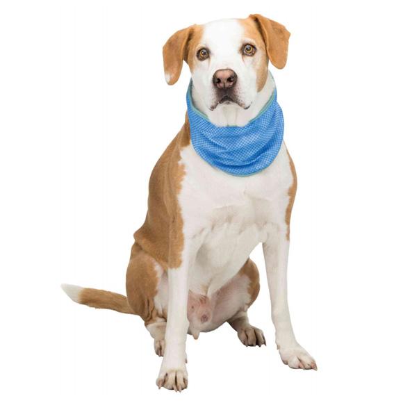 trixie bandamka dla psa