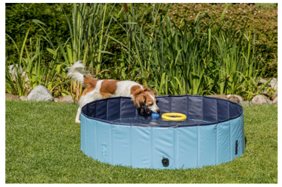 trixie basen dla psa