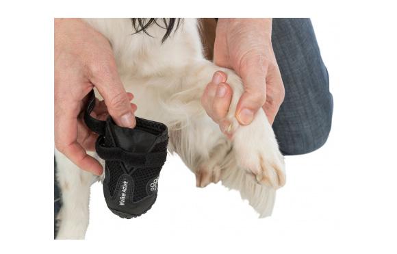 Trixie Buty ochronne dla psa