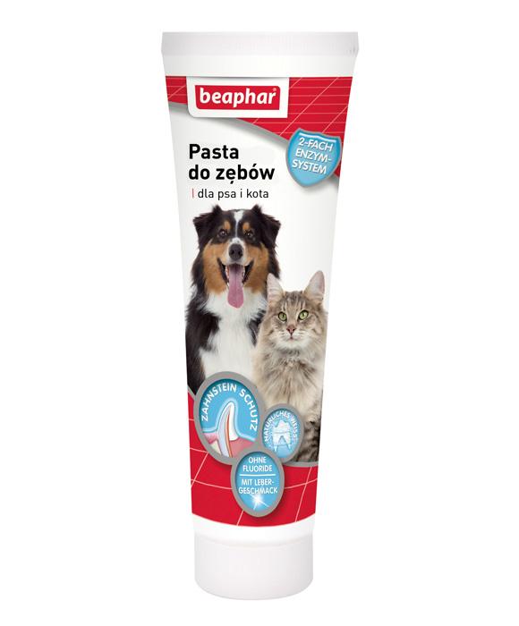 8711231127894 beaphar pasta do zebow dla psa i kota