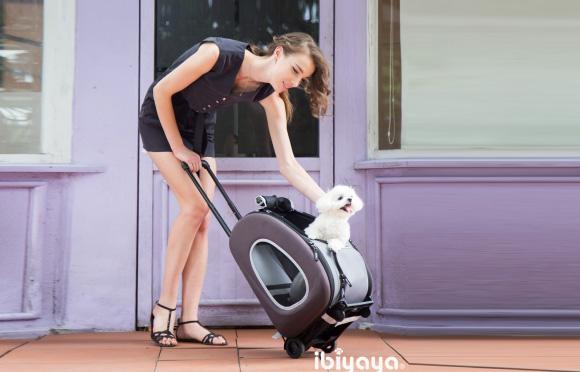 Ibiyaya torba transportowa dla psa i kota 4715243340917