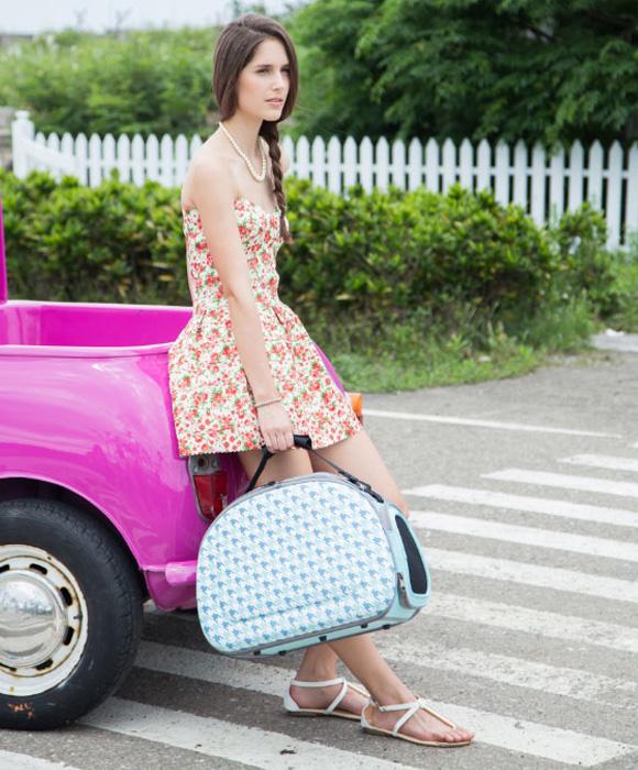 Ibiyaya torba transportowa dla psa i kota 4715243342676