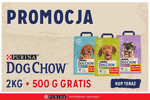 Kup karmę Purina Dog Chow dla psa i odbierz 500g GRATIS!