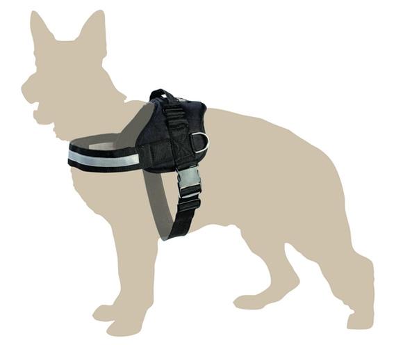 dingo America Strong szelki dla psa