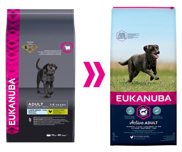 Eukanuba adult large sucha karma dla psa