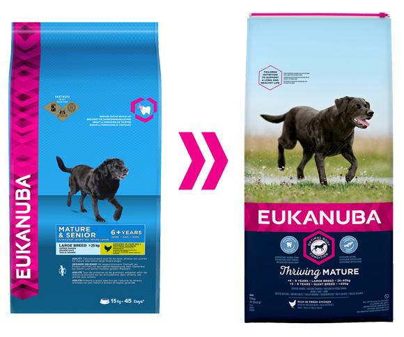eukanuba dla starszych psów ras duzych i olbrzymich