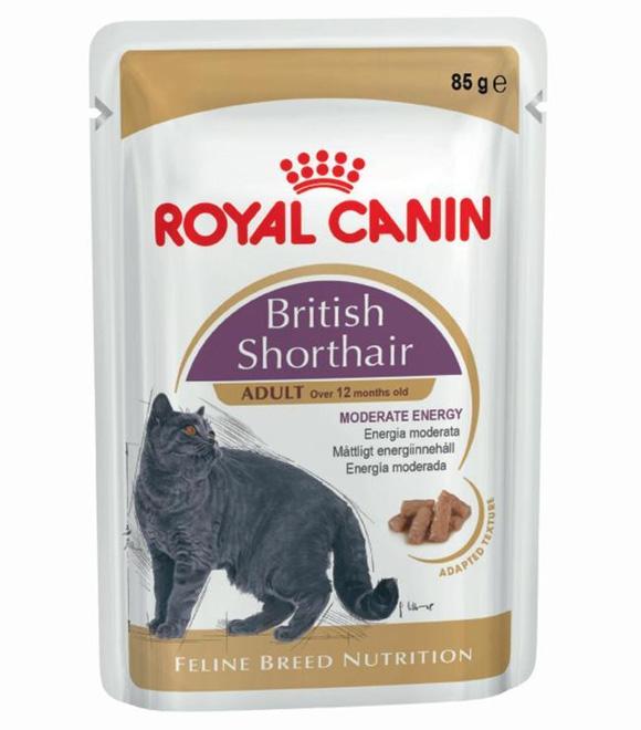 royal canin British Shorthair mokra karma dla kota