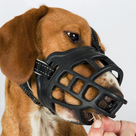 trixie kaganiec elastyczny dla psa