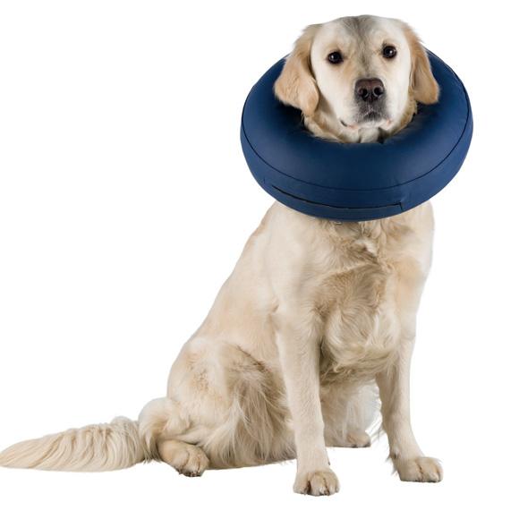 Pompowany kołnierz pooperacyjny dla psa, Trixie