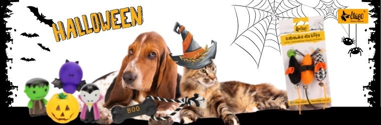 Dingo halloween - strona kategorii
