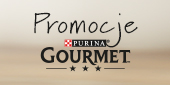 gourmet baner boczny promocje