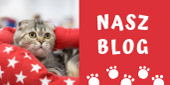 Blog internetowego sklepu zoologicznego Telekarma