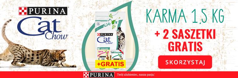 cat chow 1,5kg + saszetki strona kategorii