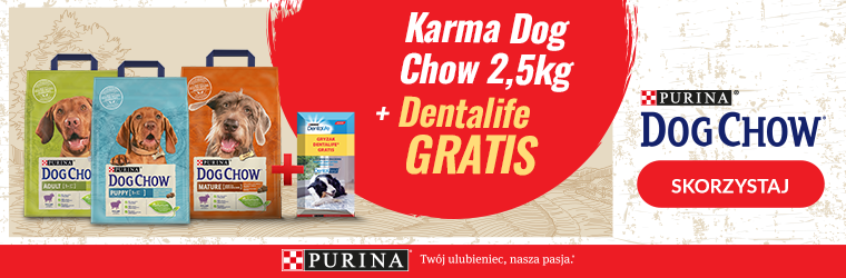 dog chow 2,5kg+dentalife strona kategorii