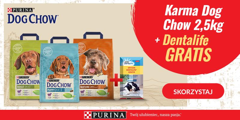 dog chow 2,5kg+dentalife baner glowny