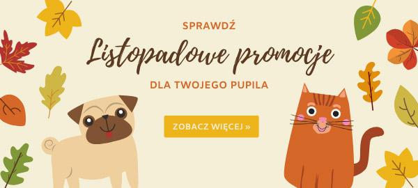 listopad_2019_listopadowe_promocje