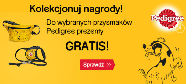 pedigree_dentastix+nerka_smycz