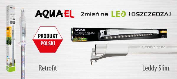 aquael_oswietlenie_led