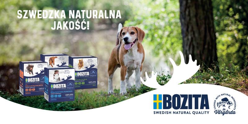 Bozita karmy dla psa - baner strona główna