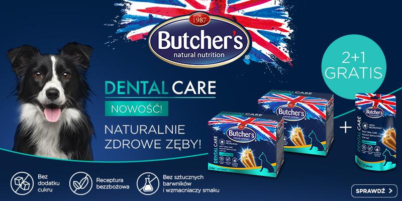 Butchers Dental promocja- strona główna