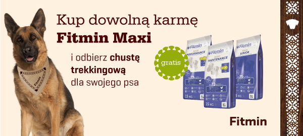 fitmin_program+chusta_bawelniana