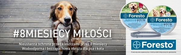 Foresto strona kategorii na pasozyty / pies