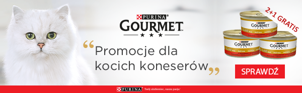 gourmet gold strona kategorii promocja 1+1 gratis
