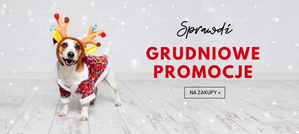 grudniowe_promocje_w_telekarmie_2019