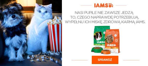 Iams_karmy_dla_psa_i_kota