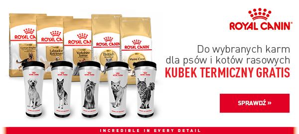 royal canin karma + kubek termiczny strona glowna