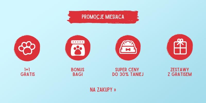 marzec_promocje_miesiaca