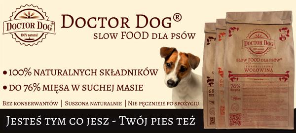 baner_top_doctor_dog