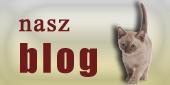 blog_telekarma
