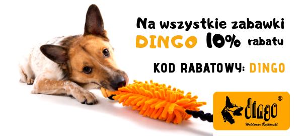 dingo 10% zabawki dla psa strona glowna