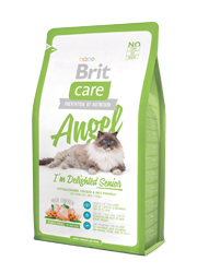 BRIT CARE CAT ANGEL IM DELIGHED SENIOR